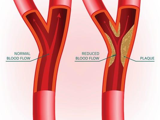 Blood Vein Image