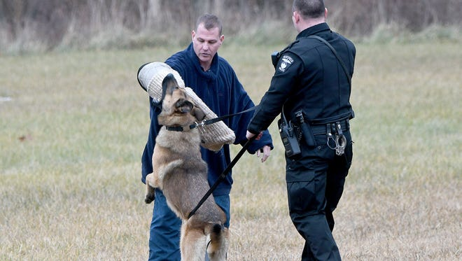 Officer Josh Frech pulls Ferro off Sgt. Tommy Cronenett of the Mt Gilead Police Department on Monday afternoon during a demonstration following a graduation ceremony for two Mansfield police officers and their K-9 partners and a Danville police officer and his partner