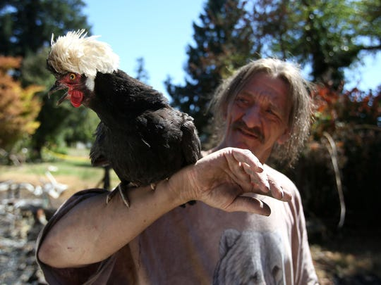 Randy Wilson holds, Betsy, one of the 30 chickens he and his wife own. Photo taken on Wednesday, July 1, 2015, in Salem, Ore.