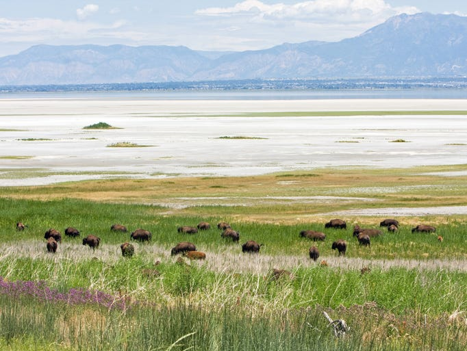 Antelope Island State Park occupies the largest of