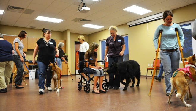 Door County dogs took therapy dog training classes at Door County Humane Society this fall.