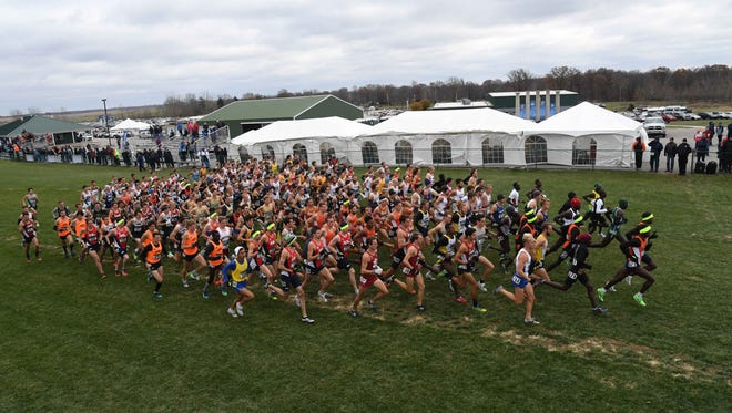 A general view of the men's race in the NCAA cross country championships on the LaVern Gibson championship course at the Wabash Valley Family Sports Center.