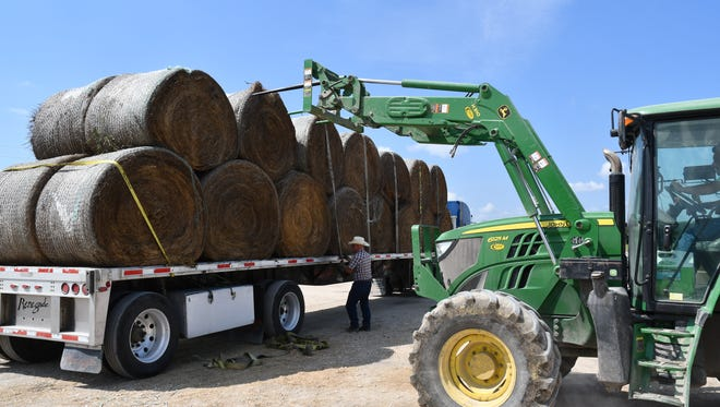 Hay and feed donations were valued at more than $1.3 million, according to Texas A&M AgriLife Extension Service economists.