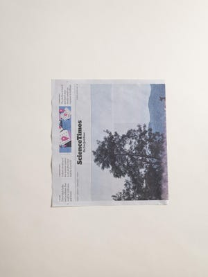 1. Start with a single sheet of newspaper, cut in half through the middle and turned sideways.