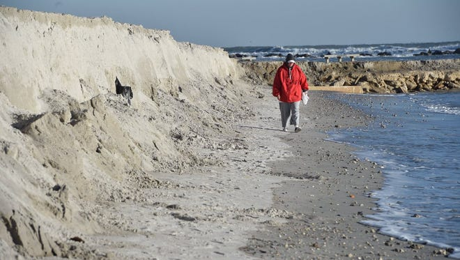Michelle Dekmar searches for shells along the eroded beach in Fort Pierce Jan. 4, 2018. Temperatures were in the 30s, with wind chills in the 20s.