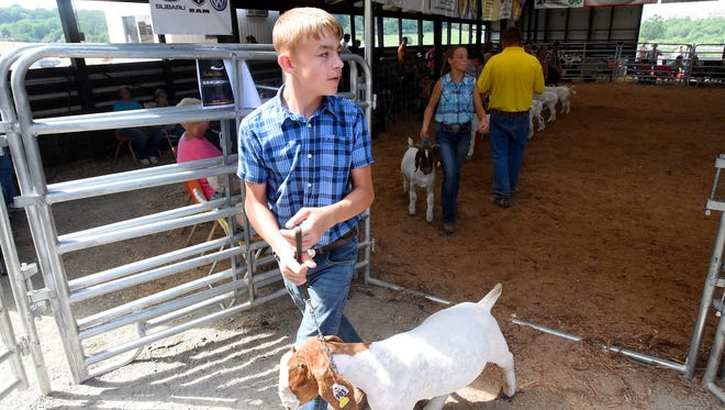 Contestants leave the show ring one at a time after competing in Division 2 Class 3 during the market goat show at the Augusta County Fair on Friday, Aug. 4, 2017.