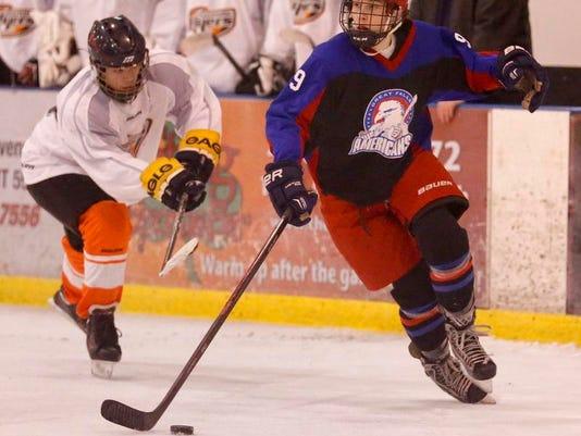 -Hockey Americans v Foothills 3.jpg_20140215.jpg