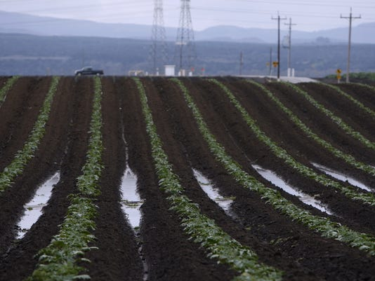 weather and agriculture