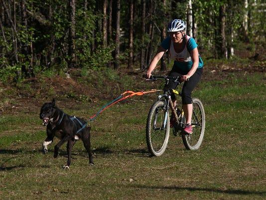 Bike joring 1