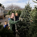 Selecting and caring for a real Christmas tree