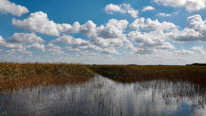 Clouds are reflected in the Florida Everglades, otherwise known as the River of Grass.