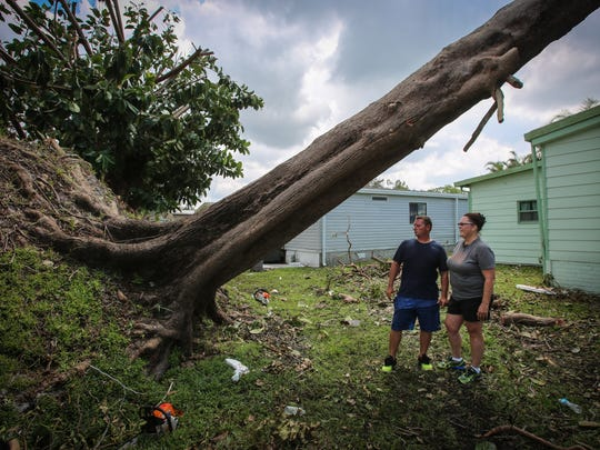 David and Lisa Nagel helped organize a group of 12 people to drive to Naples from Minnesota to provide relief from destruction caused by Hurricane Irma. They were inspired by an article they read about a tree that fell onto a woman's home and punctured the roof. Here, they stand beneath that same tree.
