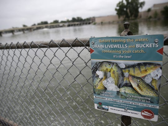 A Department of Natural Resources sign hangs on a fence in Island Park in Neenah. Round gobies, an invasive species, were caught near the park and the detection of the species has closed the Menasha Lock until further notice.