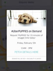 Uber users in Cincinnati will see this message on Friday, Feb. 5, as part of the ride-hailing service's UberPUPPIES promotion.