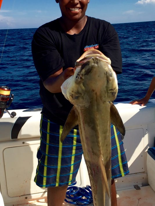 636135197503515363-cobia-connelly.jpg