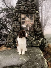 Harrison Dandrea went for a day hike with his dog,