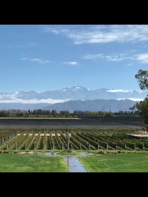 Bodego Norton winery in Argentina offers an amazing portfolio of wines celebrated in the United States.