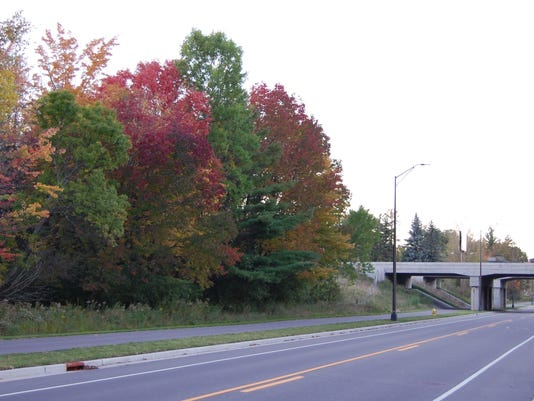 636114720700854951-10.09.16---Roadside-Colors.jpg
