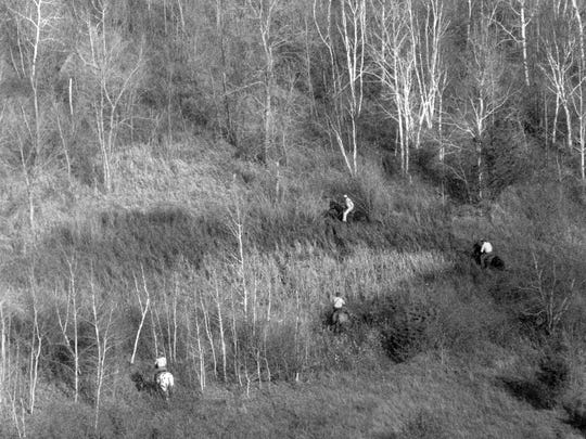 Officials on horseback search a wooded area near the