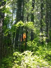 This photo shows the small five acre fire near Henline Falls out in the Little North Santiam canyon area near Three Pools Recreation Area.
