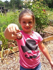 Community gardens are a great place to learn about gardening.