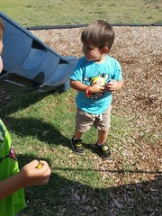 """On his third birthday, Nykolai, son of Marissa Mendoza was able to hunt rocks painted as minions throughout Carlsbad. The New Mexico """"Rocks"""" Facebook page members painted the rocks by request for Nykolai."""