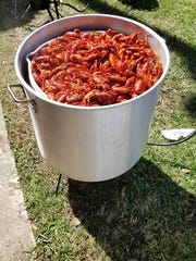 Crawfish Cookout