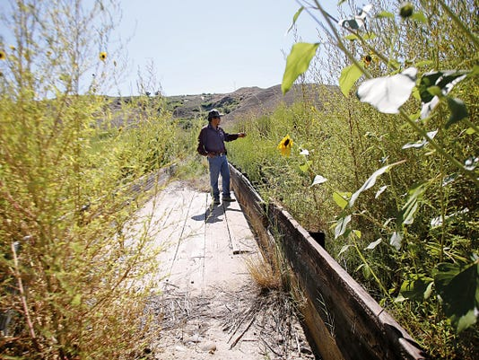 Shiprock Irrigation Supervisor Marlin Saggboy watches as water flows Friday along the Fruitland Irrigation canal in Upper Fruitland.