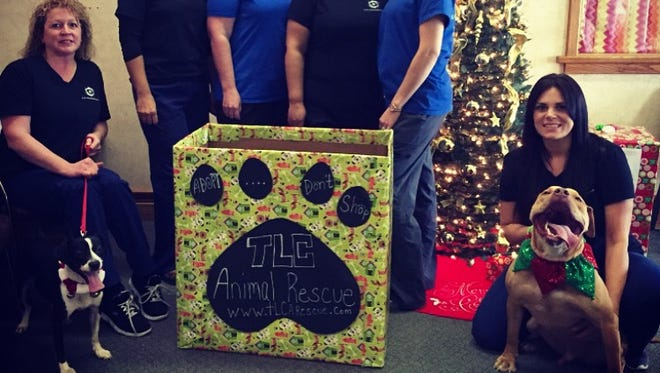 "Rocky and Danny, who are both looking for a forever home with help from TLC Animal Rescue, are pictured with The Eye Professionals staff. The staff has ""adopted"" the rescue for the holidays."