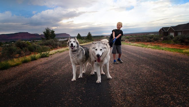 Harry Williams, 7, with his dogs Flora and Gandalf on his way to the bus stop on first day of school in Kanab, Utah. For millions of dogs across the country, summer is gone and so are their best buddies.