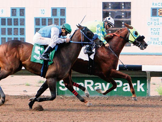 Alsono (inside), ridden by Alfredo Juarez Jr., prevails by a neck over Chasing The Heat and jockey Enrique Gomez in Sunday's 35,000 Marathon Handicap at Sunray Park and Casino.