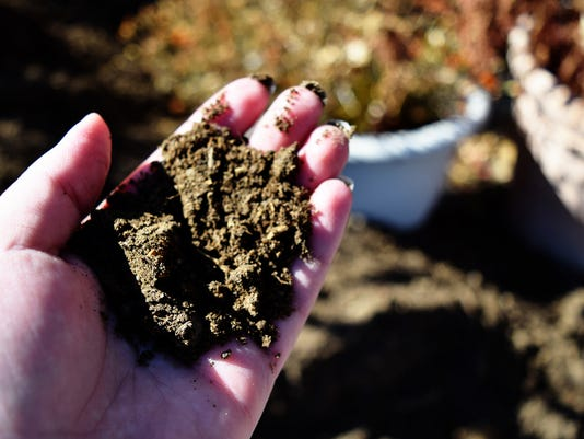 636246855209276323-Compost-in-Hand-by-Ashley-Andrews.jpg