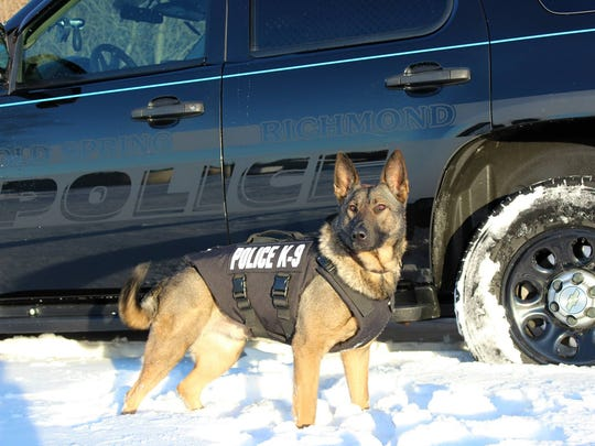 Riley, the Cold Spring-Richmond Police Department's current K9 officer, is shown outside a patrol vehicle. He was used in more than 60 narcotic searches last year.