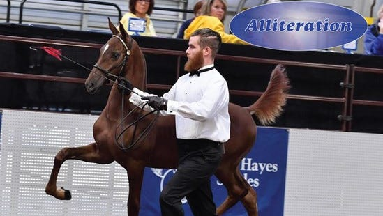 Wisconsin futurity Horse Festival at the Coliseum in State Fair Park. Sept. 1,11 a.m. -2:30 p.m. and 6:30 - 9:30 p.m.; Sept. 2, 9 a.m. - 2:30 p.m. and 6:30 - 9:30 p.m.; Sept. 3, 9 a.m. - 2:30 p.m.