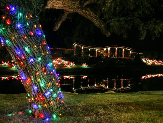 Poinsettia shaped lights decorate the area around the
