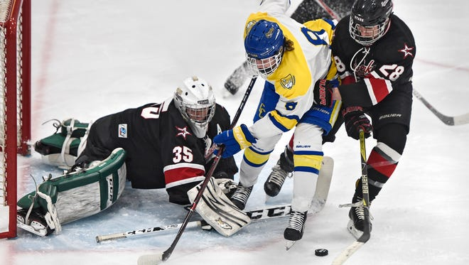 Cathedral's Nate Warner tries to get control of the puck in front of River Lakes goaltender Jonathan Terwisscha during the first period of the Saturday, Feb. 24, Section 6A Hockey game at the MAC in St. Cloud.
