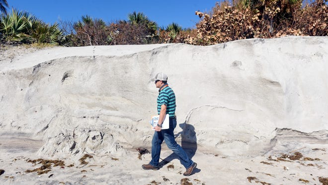 James Gray, an Indian River County coastal engineer, walks what's left of the primary dune at Turtle Trail Beach Park on Wednesday, Sept. 12, 2017, to make a survey of the amount of erosion caused by Hurricane Irma. Gray estimates that 70 percent of the dune at Turtle Trail Beach was lost because of erosion during the storm.