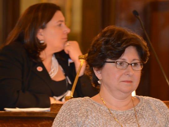 County Legislator MaryJane Shimsky, D-Hastings-on-Hudson,chairs