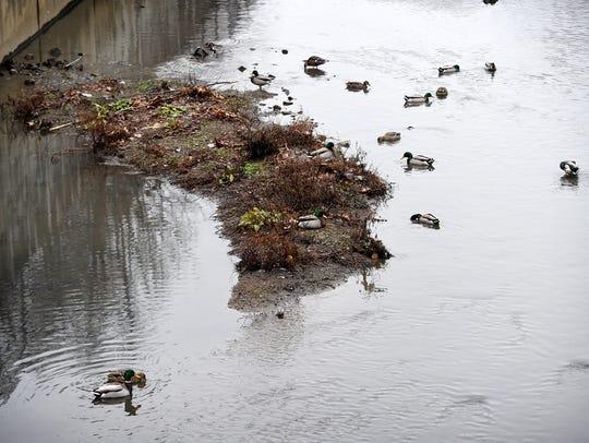 Stricter environmental regulations have local municipalities