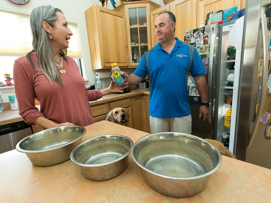 Shannon Murray and Vic Villalobos prepare a meal for their four golden retrievers Scout, Ruby, Lucy and Star on Wednesday, March 2, 2016, at their home. The couple created and are now distributing a preservative free dog shake called Bow Wow Blends that has helped Ruby out with Inflammatory bowel disease (IBD) and reflux. The shake contains pumpkin, blueberries, bananas, carrots and cranberries.