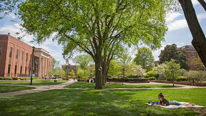 Student relaxing on the Lipscomb campus