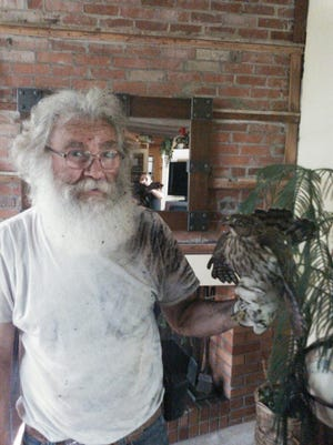 Jim Pankratz, 62, is pictured with a hawk he pulled out of a chimney in Great Falls. Pankratz specializes in trapping and relocating wild animals found in the city back out into the country.