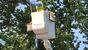 DTE worker converting a mercury vapor street light