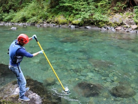 Hans Daubenberger extracts a water sample at the Duckabush