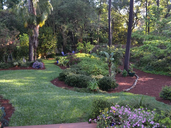 Natural woodland gardens are easier to maintain. Minimal