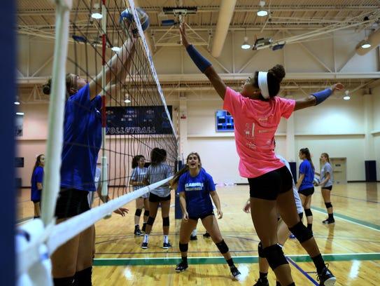 Texas A&M-Corpus Christi Islander volleyball player