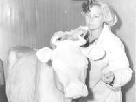"""""""Duffy"""" Lyon's first butter cow in 1960."""