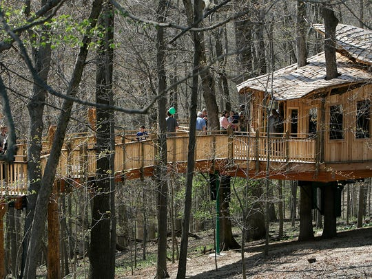 Everybody's Treehouse in Mt. Airy Forest.
