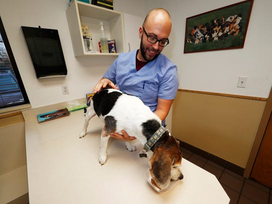 Luke Byerly guides his 14-year-old beagle, Robbie,
