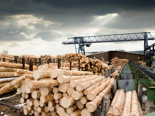 stacks-of-logs-at-a-sawmill_large.jpg